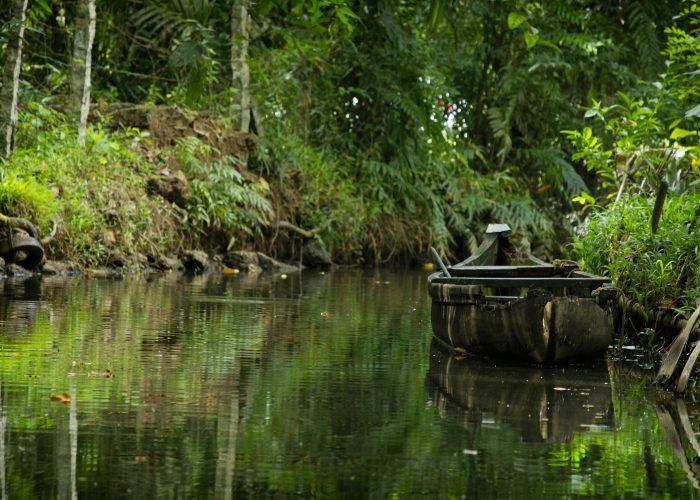 kerala backwaters indien