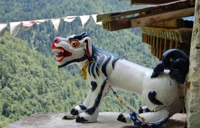 brilliante bhutan